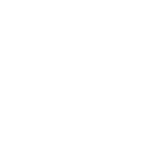 Fort Worth VolksFolks Club Logo